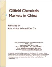 시장보고서]세계의 유전용 프로세스 화학제품 시장