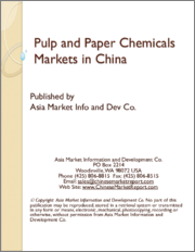 Pulp and Paper Chemicals Markets in China