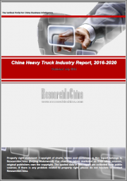China Heavy Truck Industry Report, 2019-2025