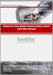 Global and China Mobile Payment Industry Report, 2020-2026