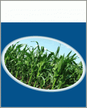 Glyphosate China - Monthly Report