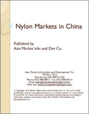 Nylon Markets in China