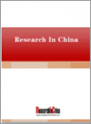 Global and China Memory Industry Report, 2019-2025