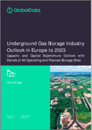 Underground Gas Storage Industry Outlook in Europe to 2022 - Capacity and Capital Expenditure Forecasts with Details of All Operating and Planned Storage Sites