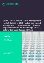 South Korea Wound Care Management Market Outlook to 2025 - Advanced Wound Management, Compression Therapy, Negative Pressure Wound Therapy (NPWT), Ostomy Drainage Bags and Others