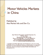 Motor Vehicles Markets in China