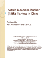 Nitrile Butadiene Rubber (NBR) Markets in China