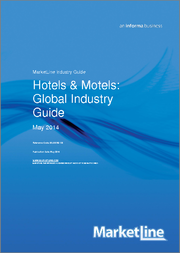 Hotels & Motels Global Industry Guide 2013-2022