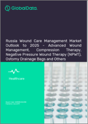 Russia Wound Care Management Market Outlook to 2025 - Advanced Wound Management, Compression Therapy, Negative Pressure Wound Therapy (NPWT), Ostomy Drainage Bags and Others