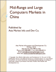 Mid-Range and Large Computers Markets in China