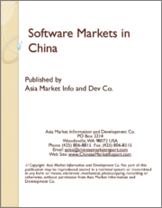 Software Markets in China