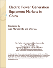 Electric Power Generation Equipment Markets in China