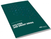 Utilities and Smart Grids