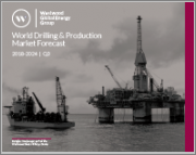 World Drilling and Production Market Forecast 2019-2025 Q1
