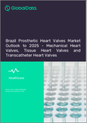 Brazil Prosthetic Heart Valves Market Outlook to 2025