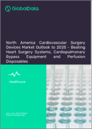 North America Cardiovascular Surgery Devices Market Outlook to 2025 - Perfusion Disposables, Cardiopulmonary Bypass Equipment and Beating Heart Surgery