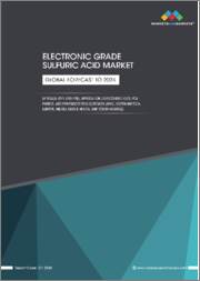 Electronic Grade Sulfuric Acid Market by Grade (PPT, PPB), Application (Semiconductors, PCB Panels, Pharmaceutical) and Region (North America, Europe, APAC, Middle East & Africa, South America) - Global Forecast to 2024
