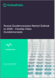 Russia Duodenoscopes Market Outlook to 2025 - Flexible Video Duodenoscopes