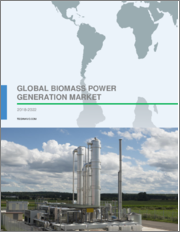 Global Biomass Power Generation Market 2018-2022