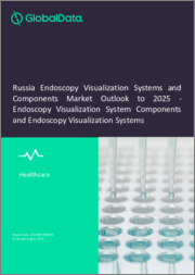 Russia Endoscopy Visualization Systems and Components Market Outlook to 2025 - Endoscopy Visualization System Components and Endoscopy Visualization Systems