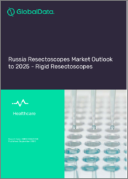 Russia Resectoscopes Market Outlook to 2025 - Rigid Resectoscopes