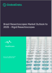 Brazil Resectoscopes Market Outlook to 2025 - Rigid Resectoscopes