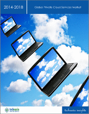 Global Private Cloud Services Market 2019-2023
