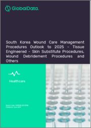 South Korea Wound Care Management Procedures Outlook to 2025 - Tissue Engineered - Skin Substitute Procedures, Wound Debridement Procedures and Others