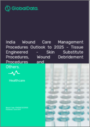India Wound Care Management Procedures Outlook to 2025 - Tissue Engineered - Skin Substitute Procedures, Wound Debridement Procedures and Others
