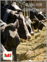 Global Feed Additives Market - Growth, Trends, and Forecast (2019 - 2024)