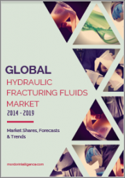 Fracking Chemicals Market - Growth, Trends, and Forecast (2019 - 2024)