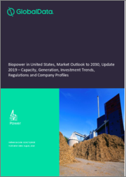 Biopower in the United States, Market Outlook to 2030, Update 2019 - Capacity, Generation, Investment Trends, Regulations and Company Profiles