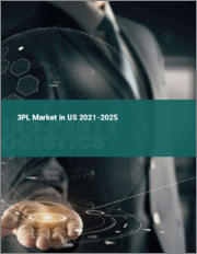 3PL Market in the US 2021-2025