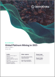 Global Platinum Mining to 2024 - Updated with Impact of COVID-19