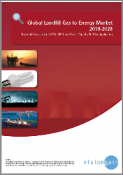 Landfill Gas to Energy Market Report 2019-2029: Forecasts for CAPEX, OPEX and by Application (Electricity, Direct Use, High BTU and Vehicle Fuel), by Country, plus Analysis of Leading Companies in the Sector
