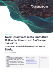 Global Capacity and Capital Expenditure Outlook for Underground Gas Storage to 2025 - Gazprom to Drive Global Working Gas Capacity Growth