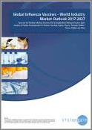 Global Influenza Vaccines Market Outlook 2019-2029: Forecasts for TIV & QIV, Revenue Forecasts & Analysis of Pipeline Developments for Fluzone / VaxiGrip, Seqirus, Fluarix / FluLaval, FluMist / Fluenz, FluBlok, Other