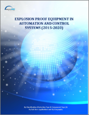 Explosion Proof Equipment in Automation & Control Systems Market - Forecast (2020 - 2025)