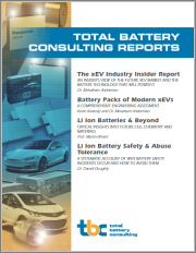 Battery Packs of Modern xEVs Report