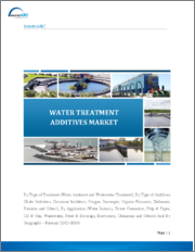 Water Treatment Additives Market - Forecast (2020 - 2025)