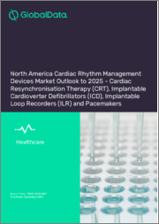 North America Cardiac Rhythm Management Devices Market Outlook to 2025 - Cardiac Resynchronisation Therapy (CRT), Implantable Cardioverter Defibrillators (ICD), Implantable Loop Recorders (ILR) and Pacemakers