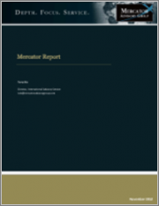 2019 Annual U.S. Debit Market Data Review