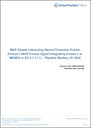 MAP Kinase Interacting Serine/Threonine Protein Kinase 2 - Pipeline Review, H2 2019