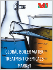 Boiler Water Treatment Chemicals Market - Growth, Trends, and Forecast (2020 - 2025)
