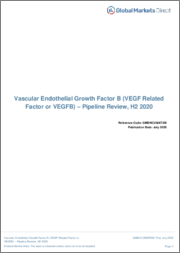 Vascular Endothelial Growth Factor B - Pipeline Review, H2 2020