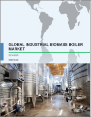 Global Industrial Biomass Boiler Market 2019-2023