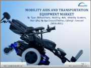 Mobility Aids and Transportation Equipment Market Analysis: By Type (Wheelchairs, Walking Aids, Mobility Scooters, Stair Lifts); By Age Group (Children, Elderly); By User (Hospital, Clinics, Patients) - 2019 -2024