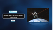 Small Satellite Market - Growth, Trends, and Forecast (2020 - 2025)