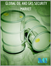 Oil and Gas Security Market - Growth, Trends, and Forecast (2020 - 2025)