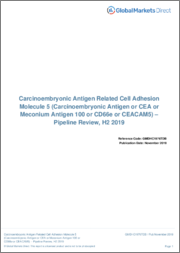 Carcinoembryonic Antigen Related Cell Adhesion Molecule 5 - Pipeline Review, H1 2019